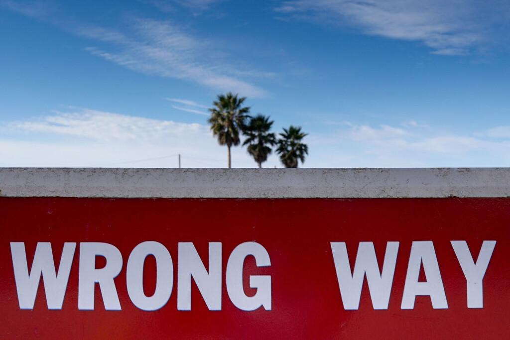 Teambuilding, Teams zum Erfolg führen, Umgang mit Fehlern
